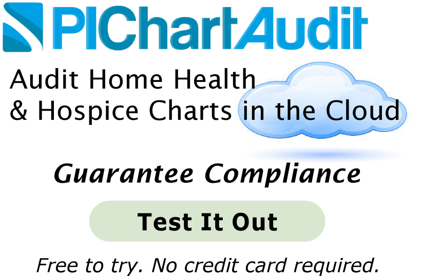 See Home Care auditing tool PIChartAudit